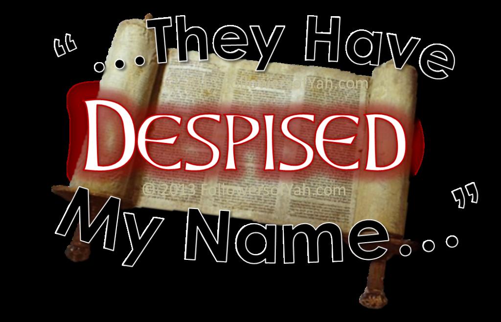 TheyHaveDespisedMyName