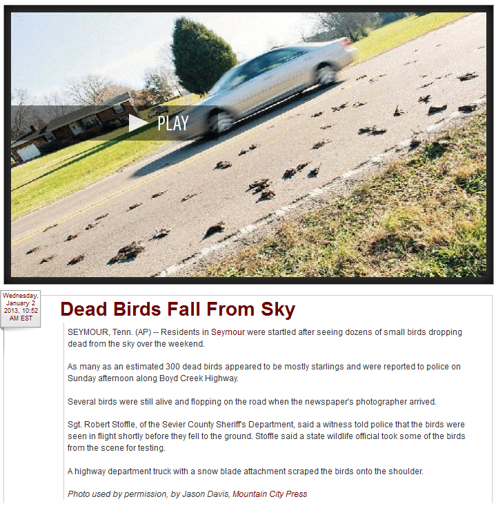 http://www.newschannel9.com/news/top-stories/stories/dead-birds-fall-sky-3646.shtml