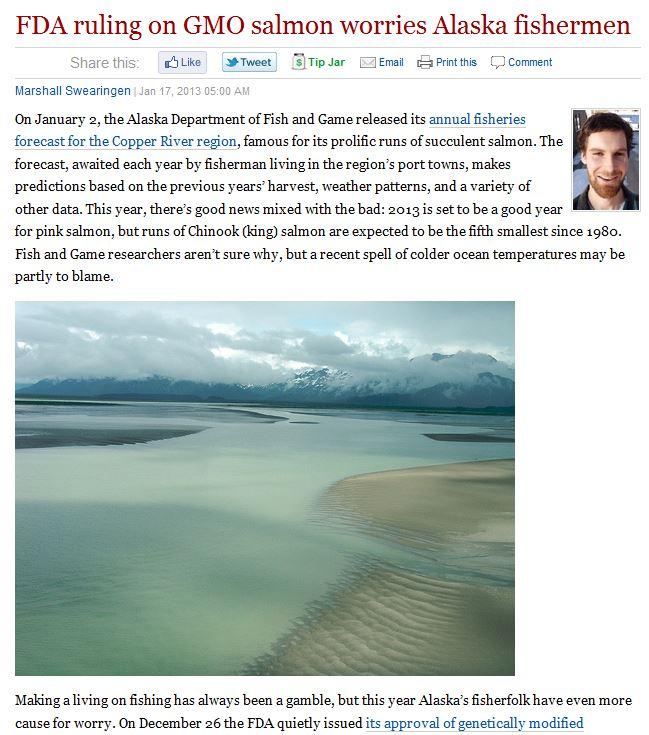 read more: http://www.hcn.org/blogs/goat/fda-ruling-on-gmo-salmon-worries-alaska-fishermen