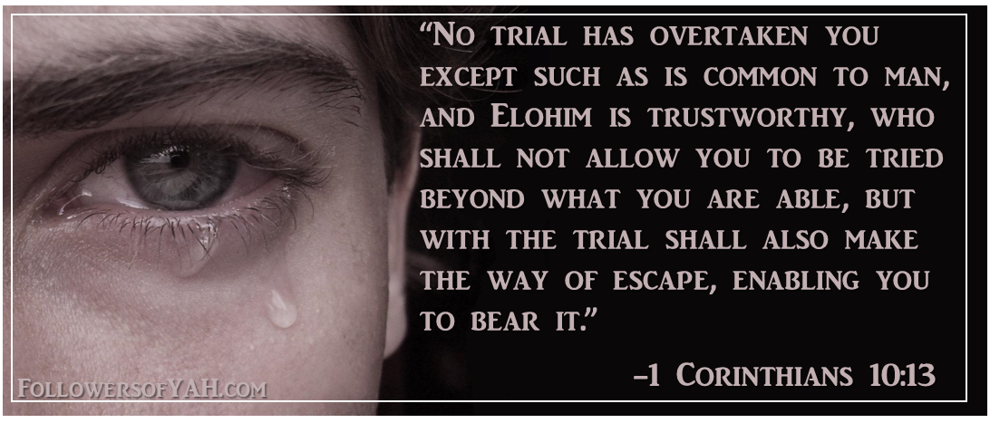 """No trial has overtaken you except such as is common to man, and Elohim is trustworthy, who shall not allow you to be tried beyond what you are able, but with the trial shall also make the way of escape, enabling you to bear it."""