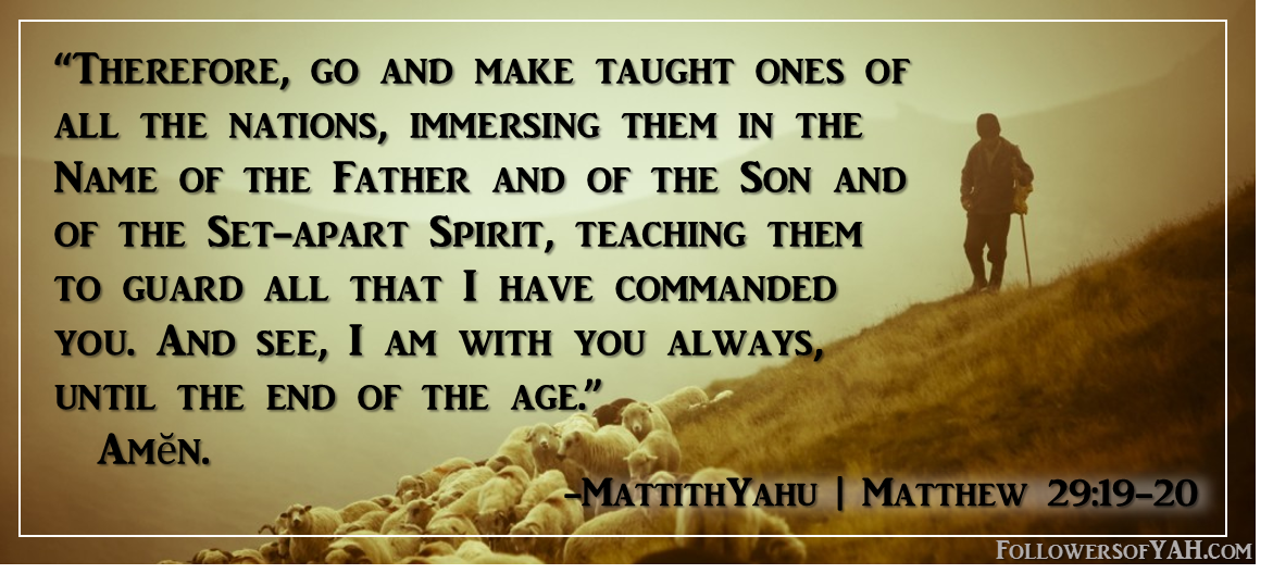 matthew 29:19-20